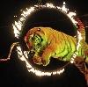 Цирки в Изоплите
